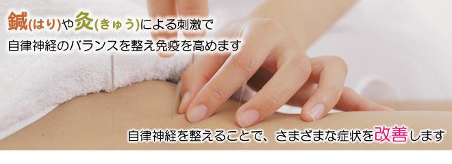 鍼(はり)灸(きゅう)